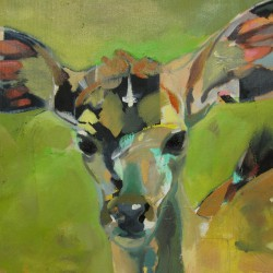 Young Kudu by Emily Kirby